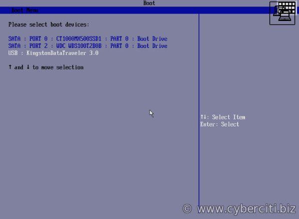 FreeBSD selecciona el USB como dispositivo de arranque